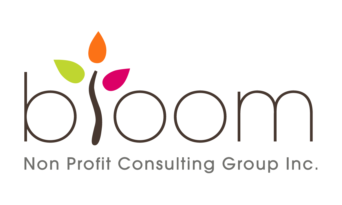 Professional Fundraising Consulting Services